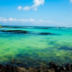 Galapagos Islands Budget Tour, One Week for $975