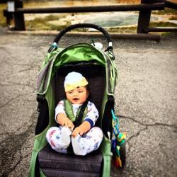 TinyMan in Stroller Yellowstone 2