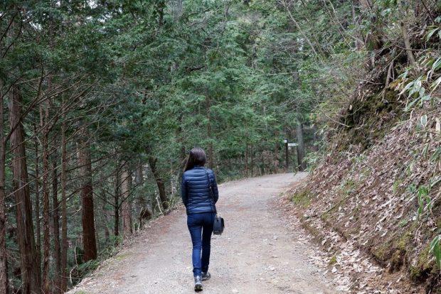 Higashiyama Walking Course Takayama
