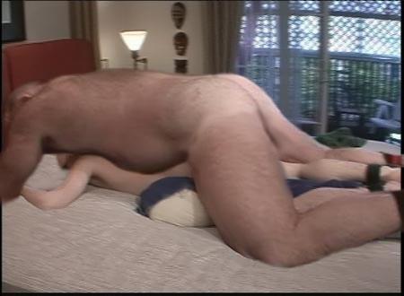 hard cock close up