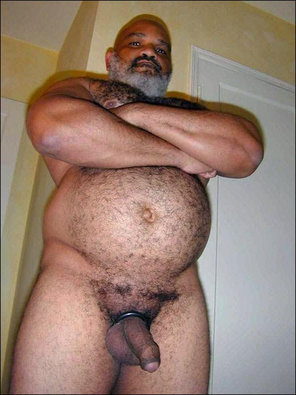 hairy bear daddies naked
