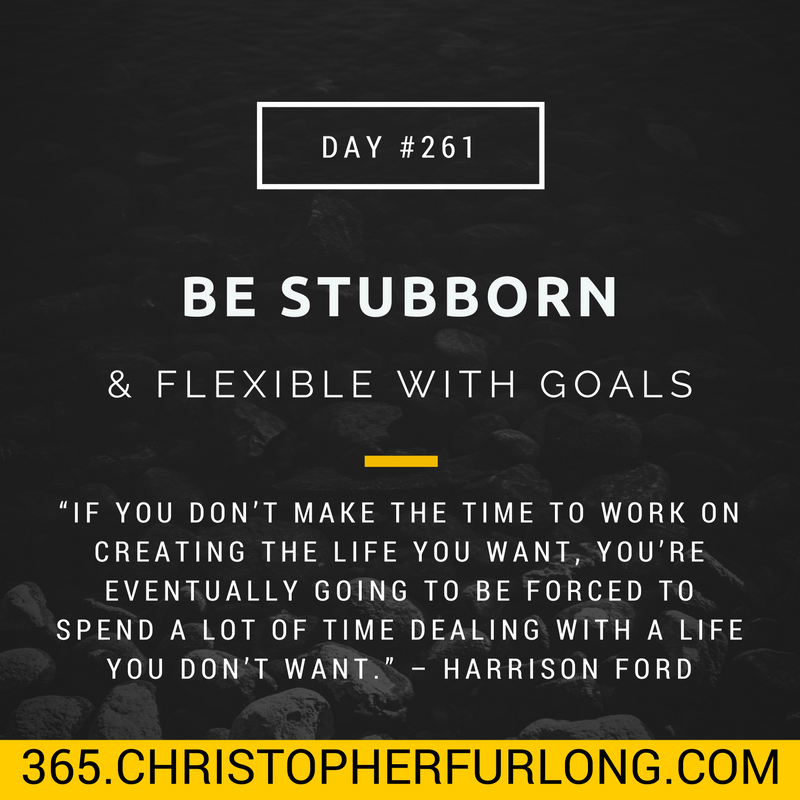 Day #261: You Should Be Stubborn & Flexible When Chasing Your Goals
