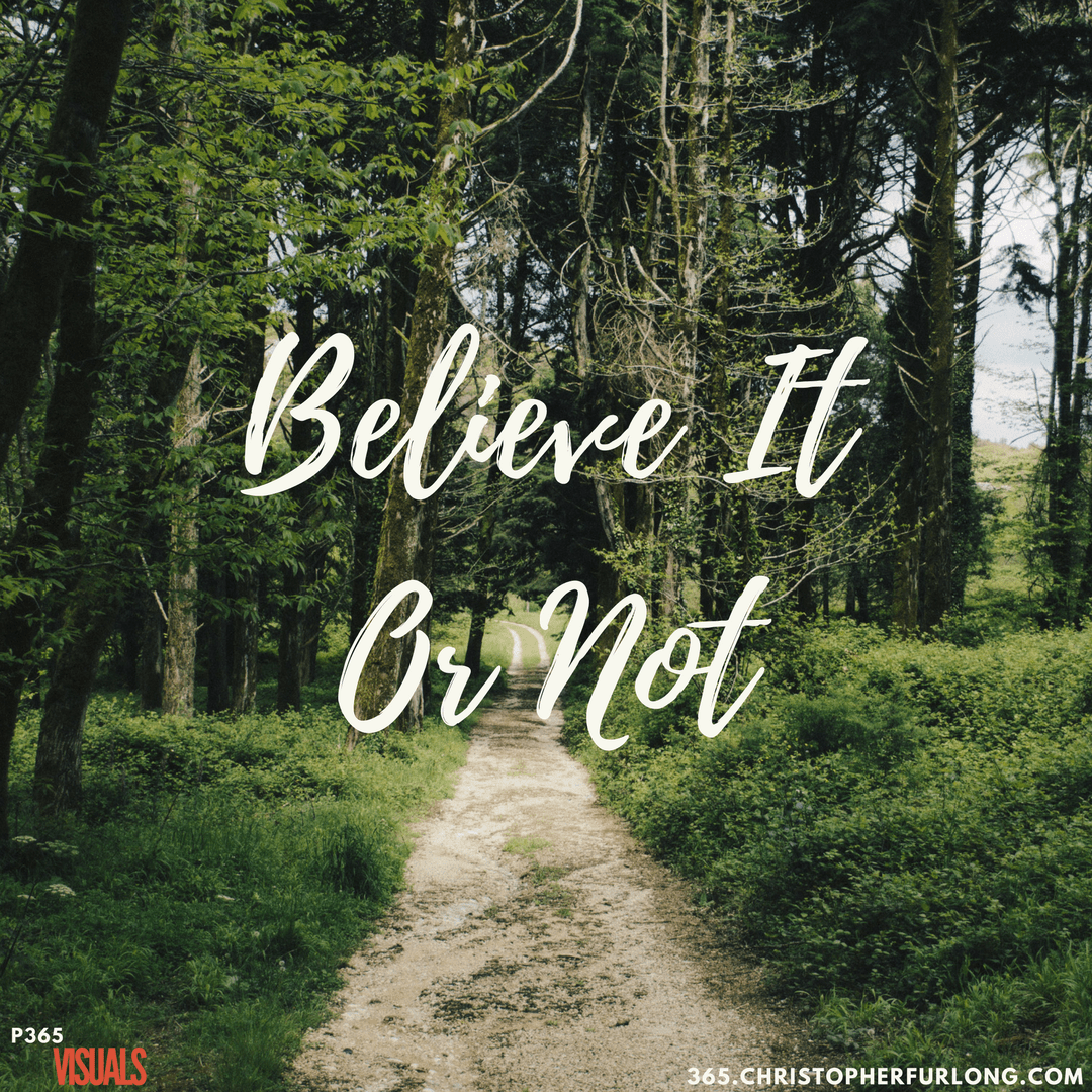 Day #103: Believe It Or Not