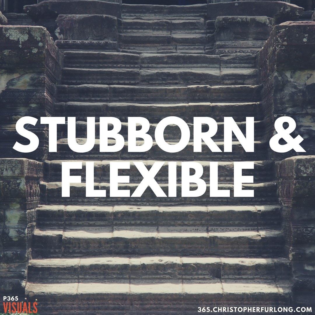Day #261:  Stubborn & Flexible