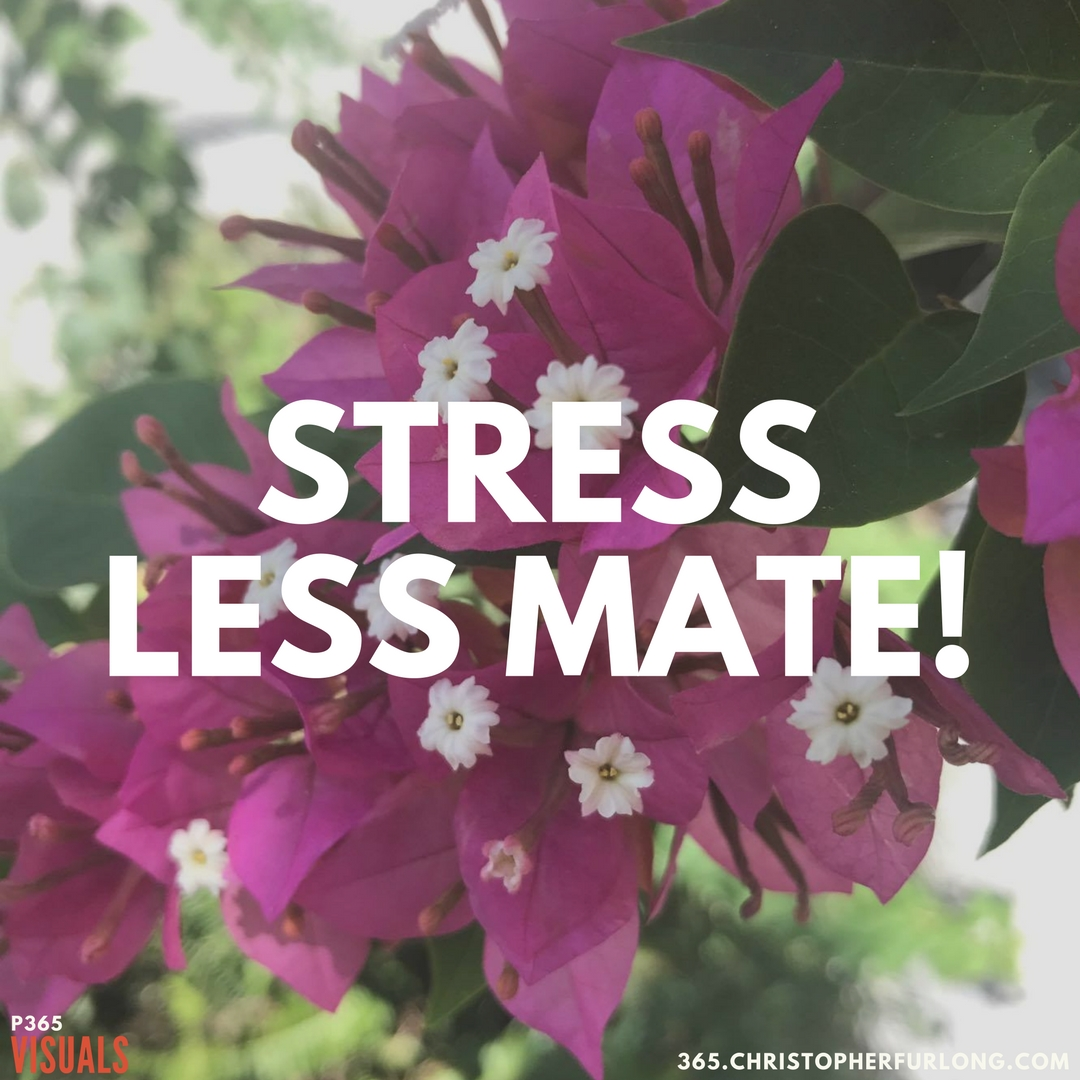 Day #279: Stress Less Mate!