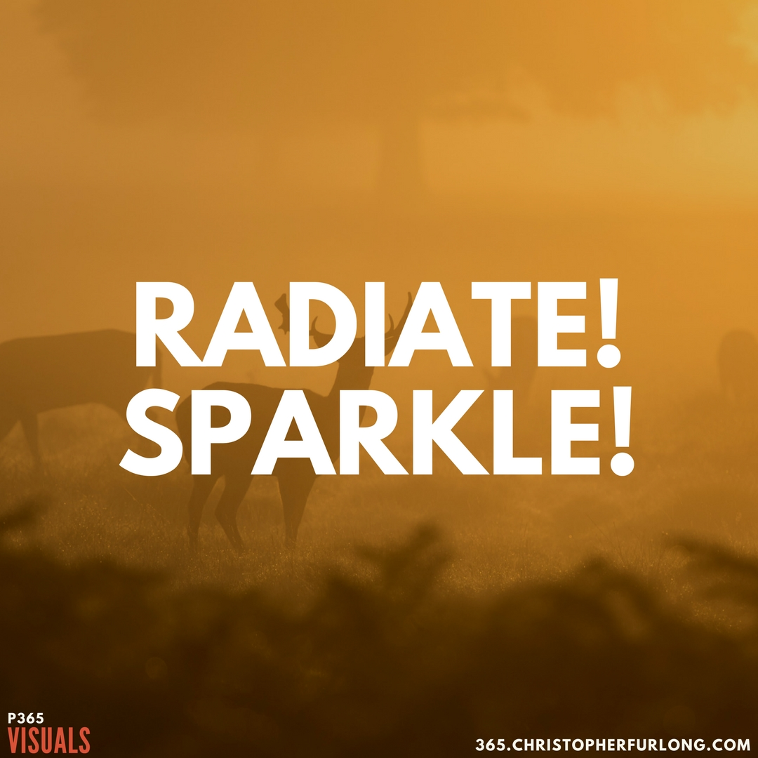 P365 2018: Day #049: Radiate! Sparkle!