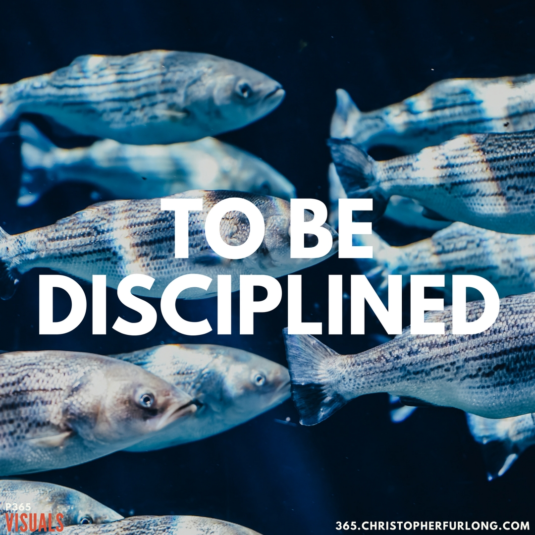 P365 2018: Day #087: To Be Disciplined