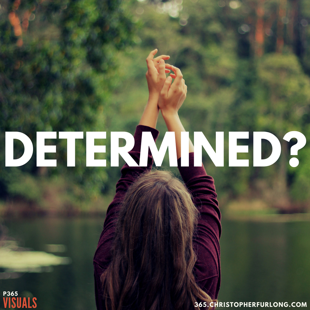 P365 2018: Day #149: Determined?