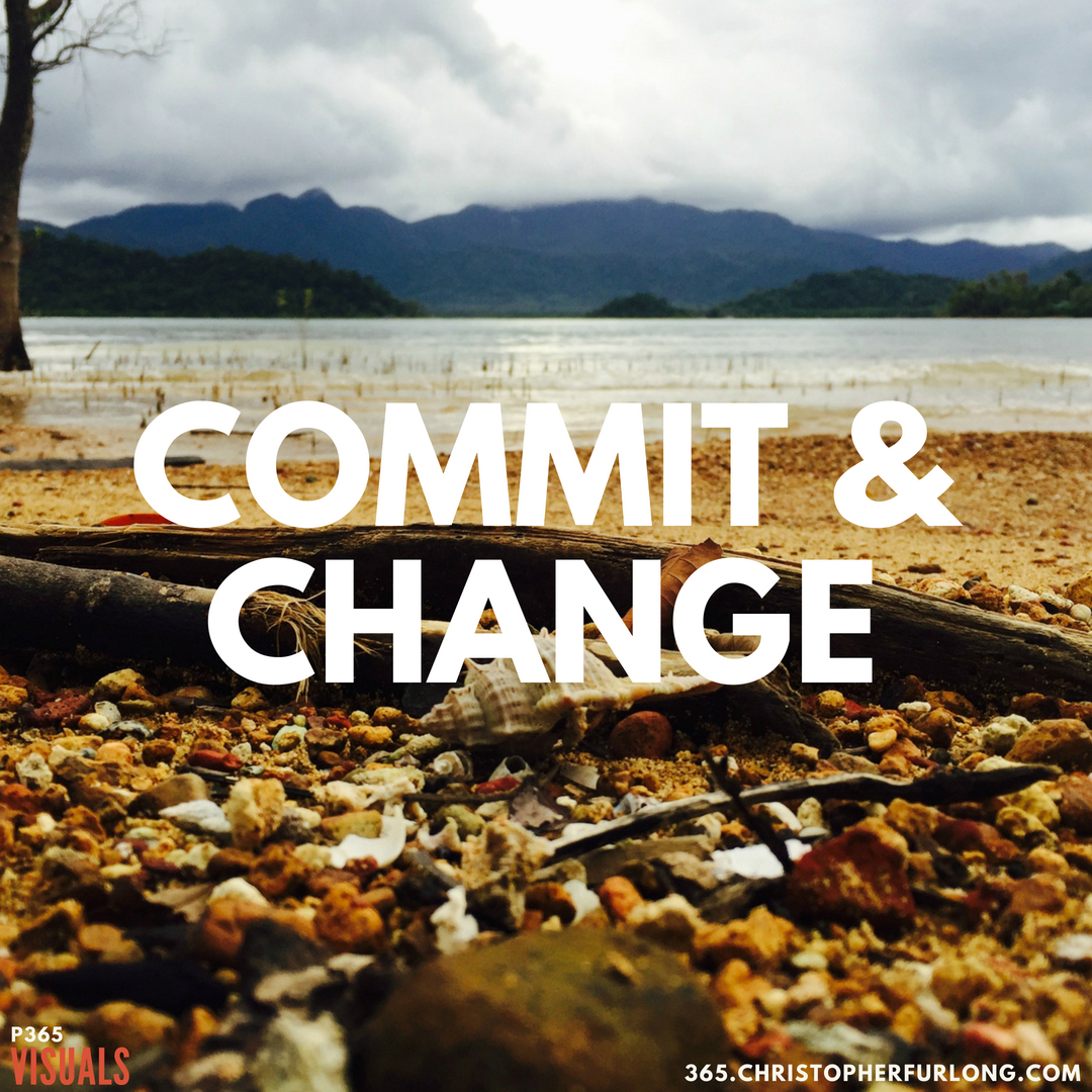 P365 2018: Day #202: Commit & Change