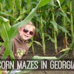 Corn Mazes in Ga