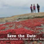 Save the Date: Monadnock Madness Triple Hike Challenge