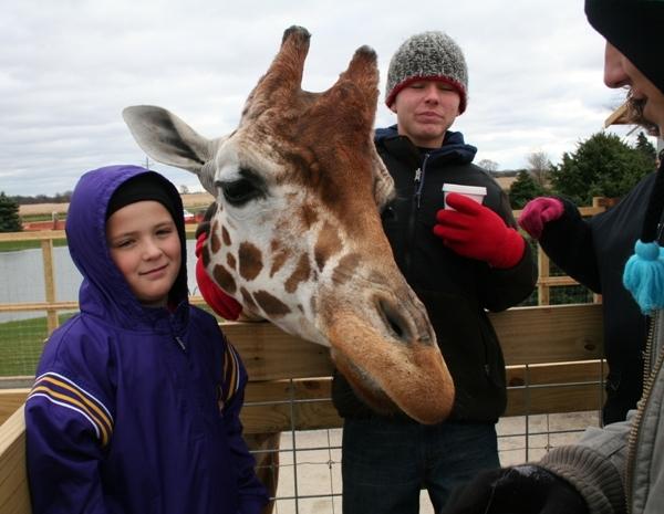 Petting Zoo at Goebbert's Farm Market