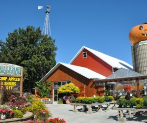 Fall Festival at Goebbert's Farm Market