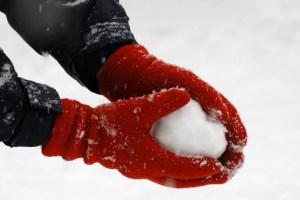 Snow Day in Barrington, Illinois