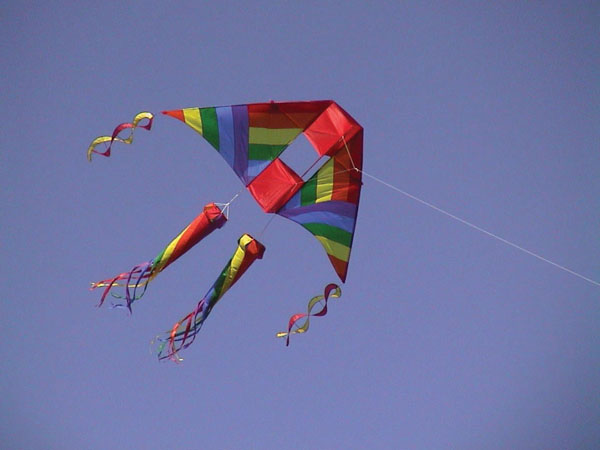 Community Kite Fly at Citizens Park in Barrington, Illinois