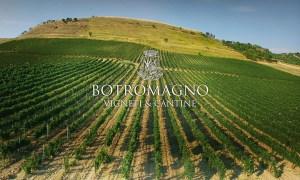 Post 1200 - Botromagno Wines - Featured
