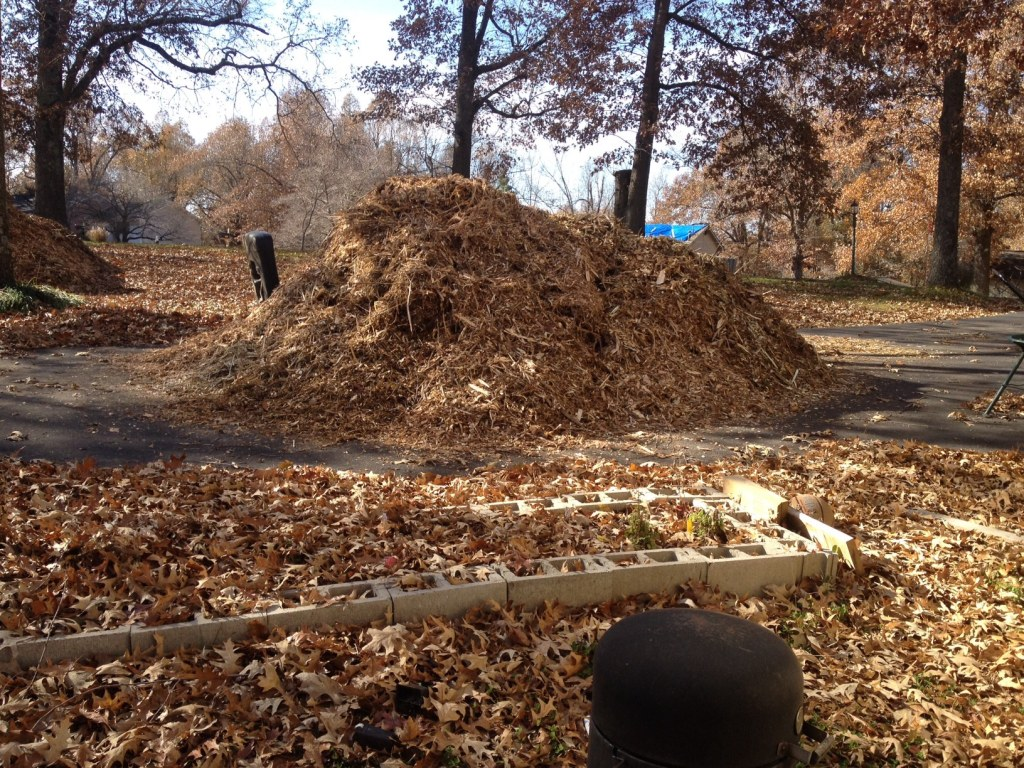 Some of our woodchips.