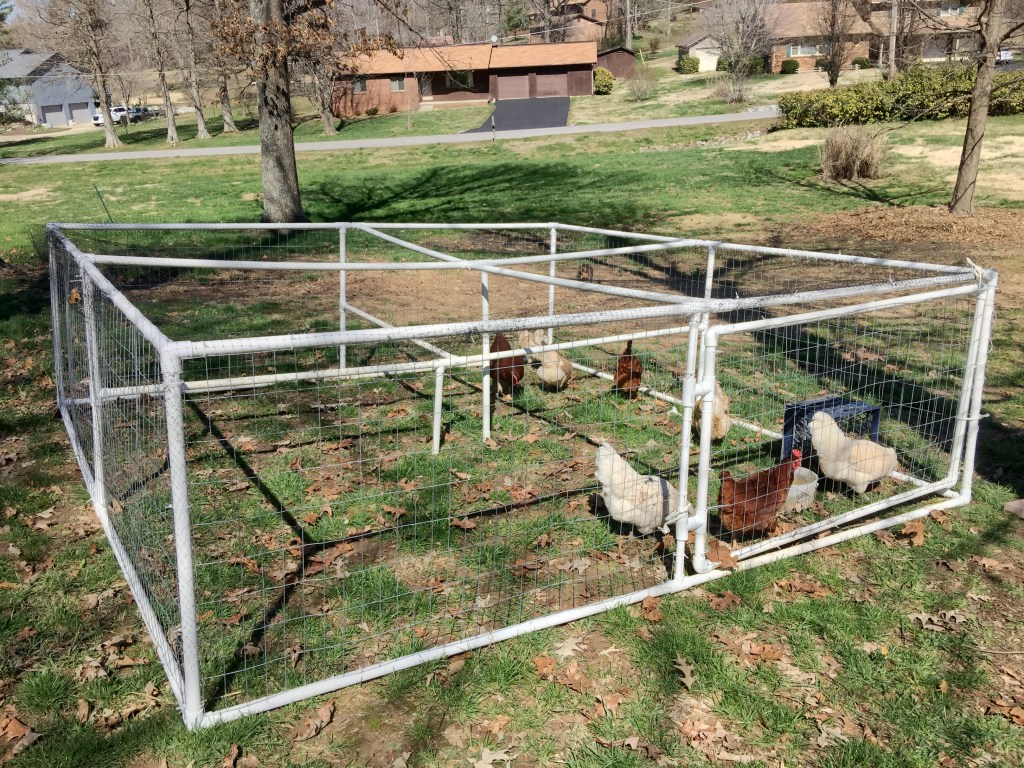 Portable PVC Chicken Run