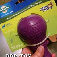 Finally Found an Indestructible Squeaky Dog Toy!
