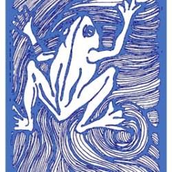 FROG1 blue & white