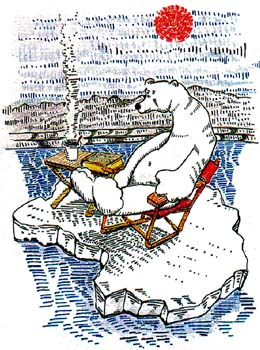 "Polar Bear 7"" x 9.5"""