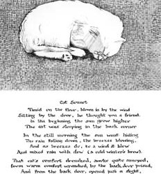 cat2 with sonnet