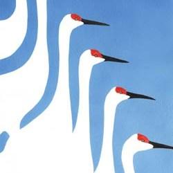 "Cranes in 3 Colors #3 10"" x 14"""