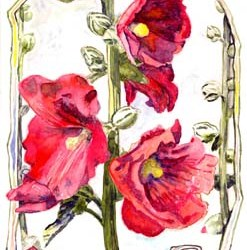 "Red Hollyhock 7"" x10"""