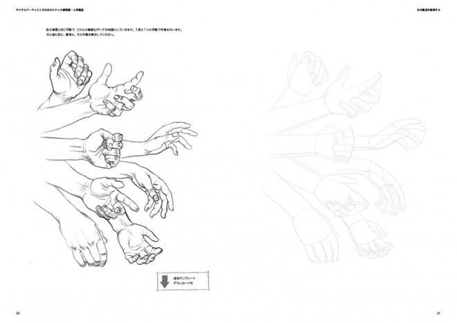 Sketch Workshop Anatomy04