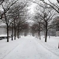 Blizzard_Boston