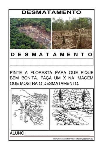 Atividades Sobre Desmatamento_ciências