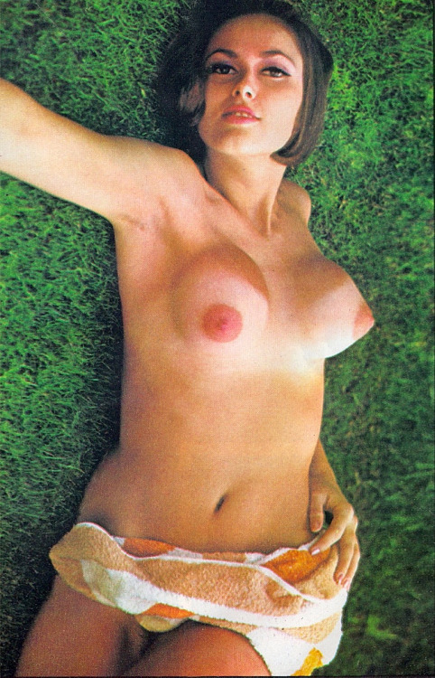 cone shaped breasts   datawav