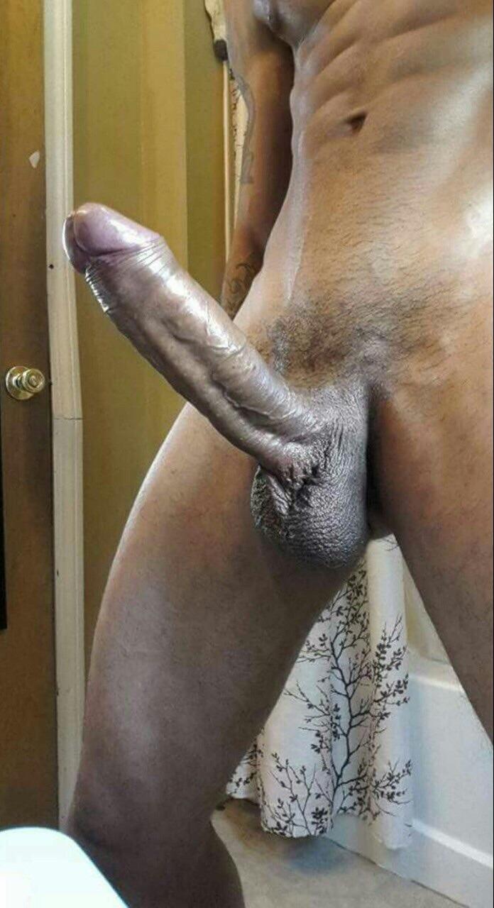 cubano gay