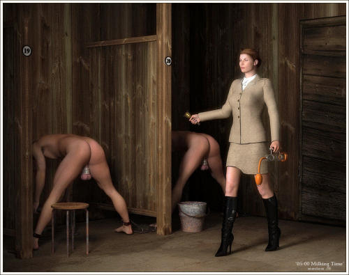 femdom male slave auction