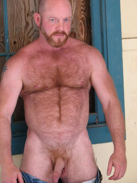hot daddy bear