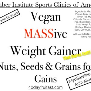 Vegan Massive Weight Gainer.001