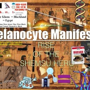 MELANOCYTE MANIFESTO COVER.001