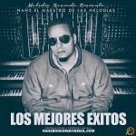 Nan2 El Maestro De Las Melodias – Los Mejores Éxitos (2015)