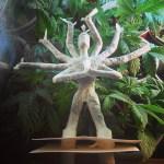 Shiva Joint