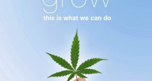 when-we-grow-documentary