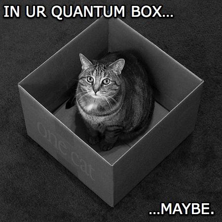 Schrodinger's LOLcat