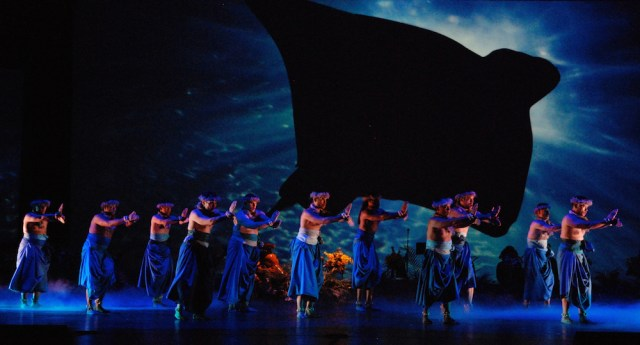 A manta ray hovers over a dance