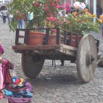 Street vendors of all sizes.