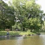 札幌中島公園こむの木家族写真
