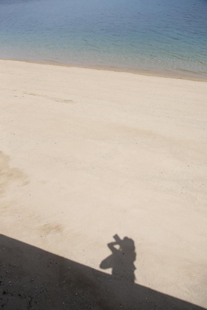 興居島の海岸