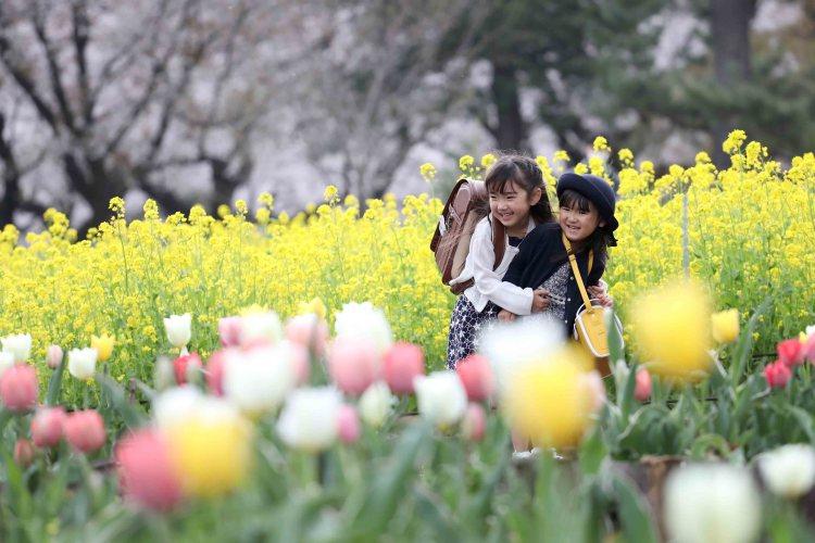 小金井公園こむの木家族写真