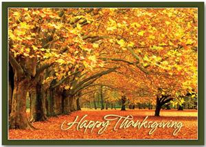 HP13309 Canopy of Gold Thanksgiving Cards 7 7/8 x 5 5/8