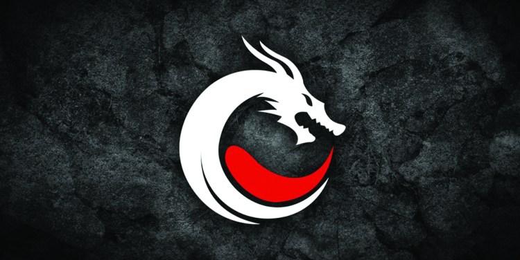 team dragon knights