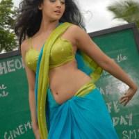 South Indian sexy Telugu actress