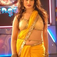 Tamil South Indian actress model
